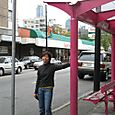 Pink Bus Stop